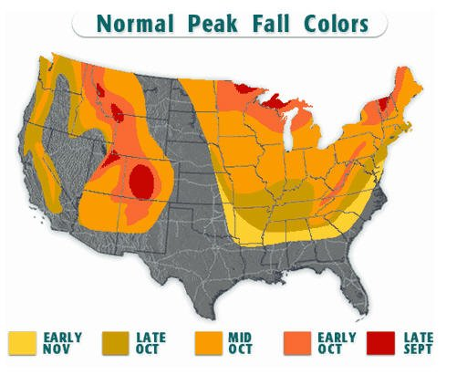 Fall Foliage Map Nationwide Peak Leaf Forecast Fall Foliage - Us map that can be colored