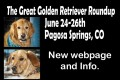 A The_Great_Golden_Retriever_Ad_5 copy b copy