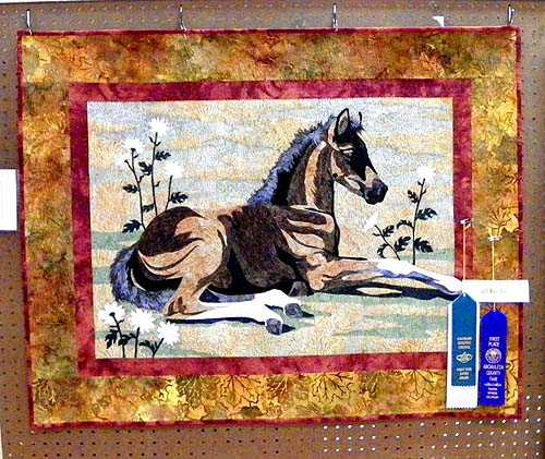 archuleta county fair - pagosa springs