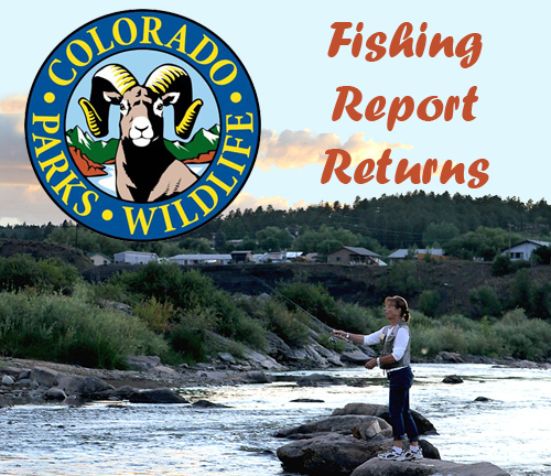2014 Fishing Report, You Can Help From Links Here